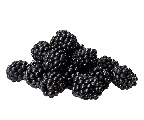 Blackberries-mindful-snacks
