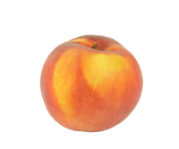 peach-mindful-snacks